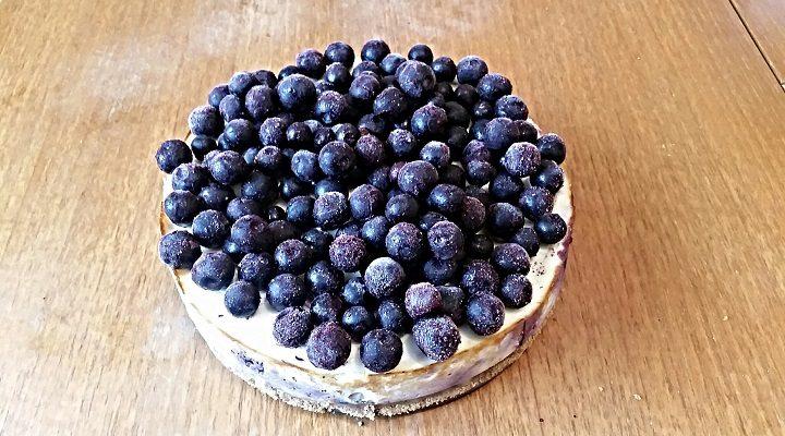 Blaubeeren-Protein Cheesecake