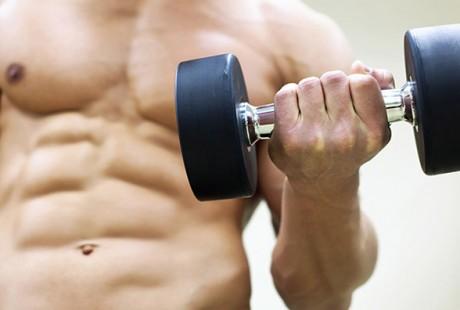 Programme de nutrition: Prise de Muscle