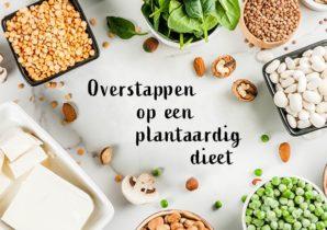 Veganuary dieet plantaardig