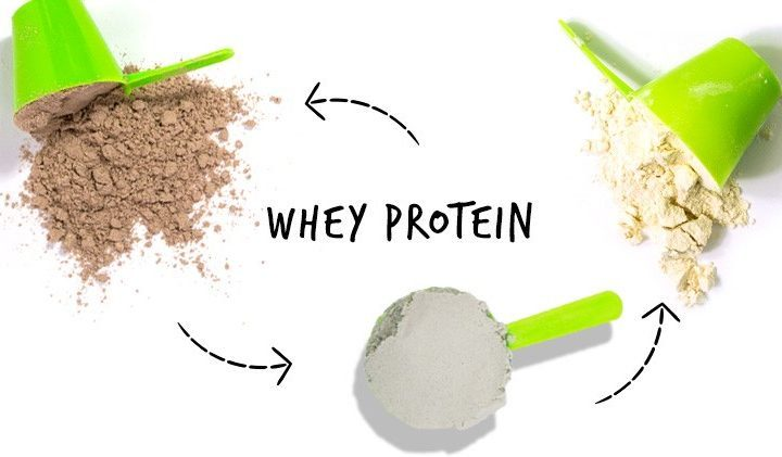 olika typer av protein