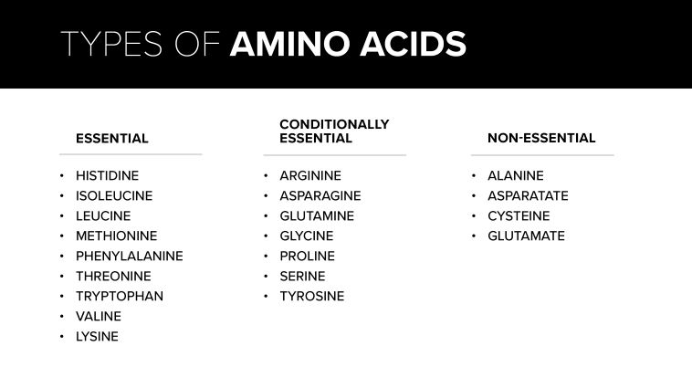 types of amino acids table