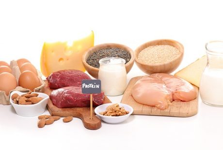 Cycling Protein Sources